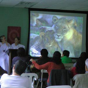 Awaken the Dreamer -Guatemala